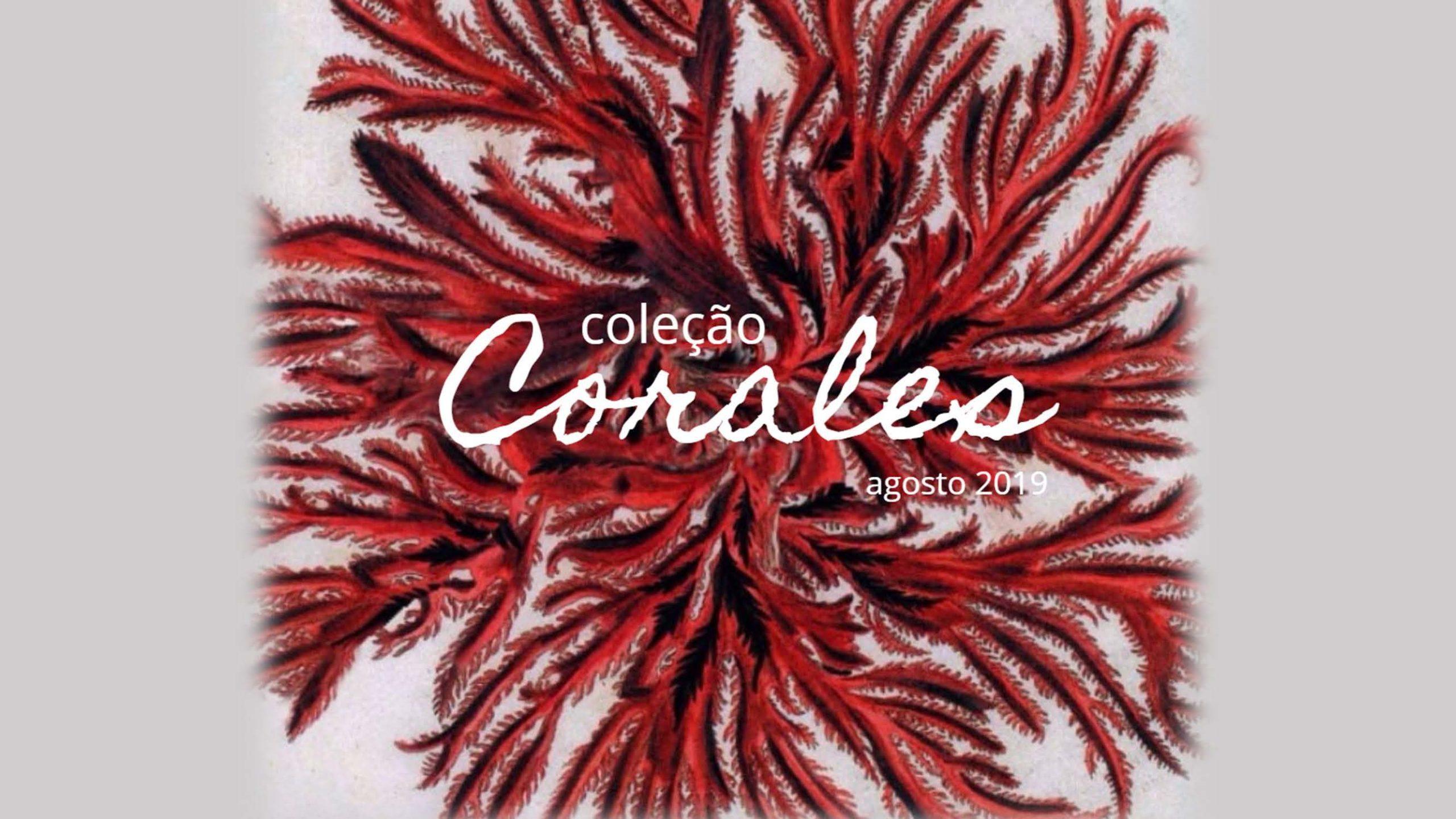 Coleção Corales 1 - Divino Espaço
